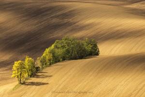 Moravia-13-SMALL-IMG_2456