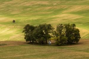 Moravia-23-small-IMG_1622